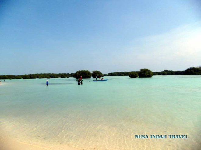 Pantai Pasir Perawan Pulau Pari Kepulauan Seribu