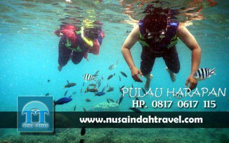 Paket Wisata Pulau Harapan untuk 2 Orang Honeymoon